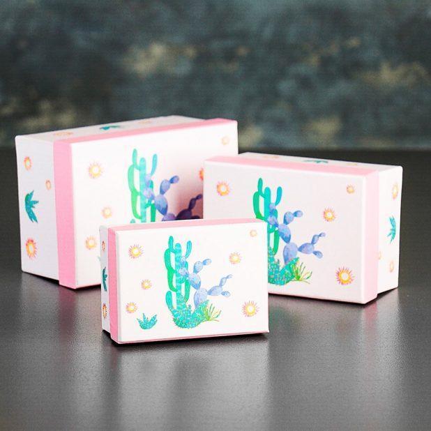Коробка кактус и цветок, 8 х 11 х 5. 5 см