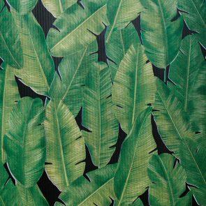 Бумага упаковочная Тропики